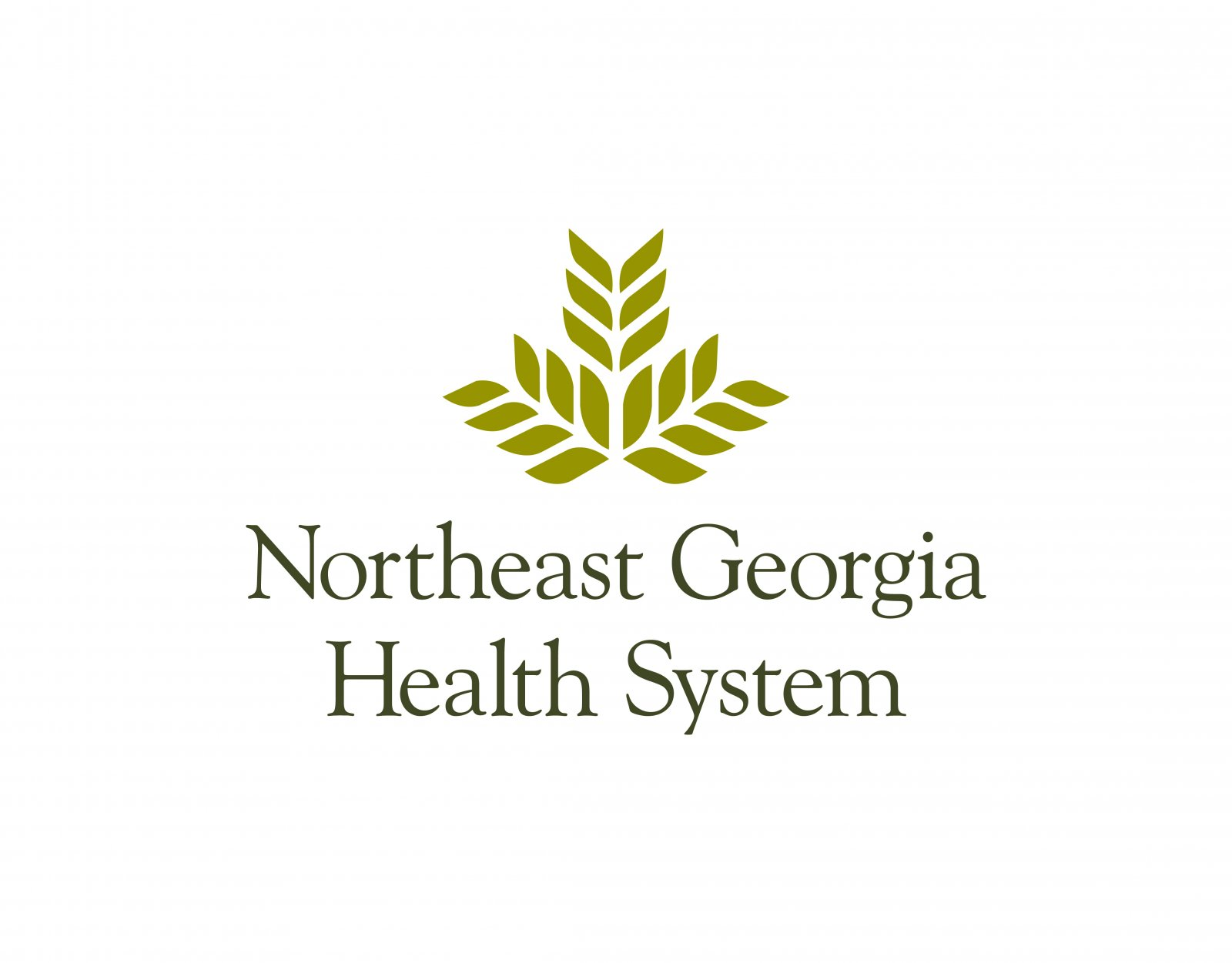 Northeast Georgia Medial Center